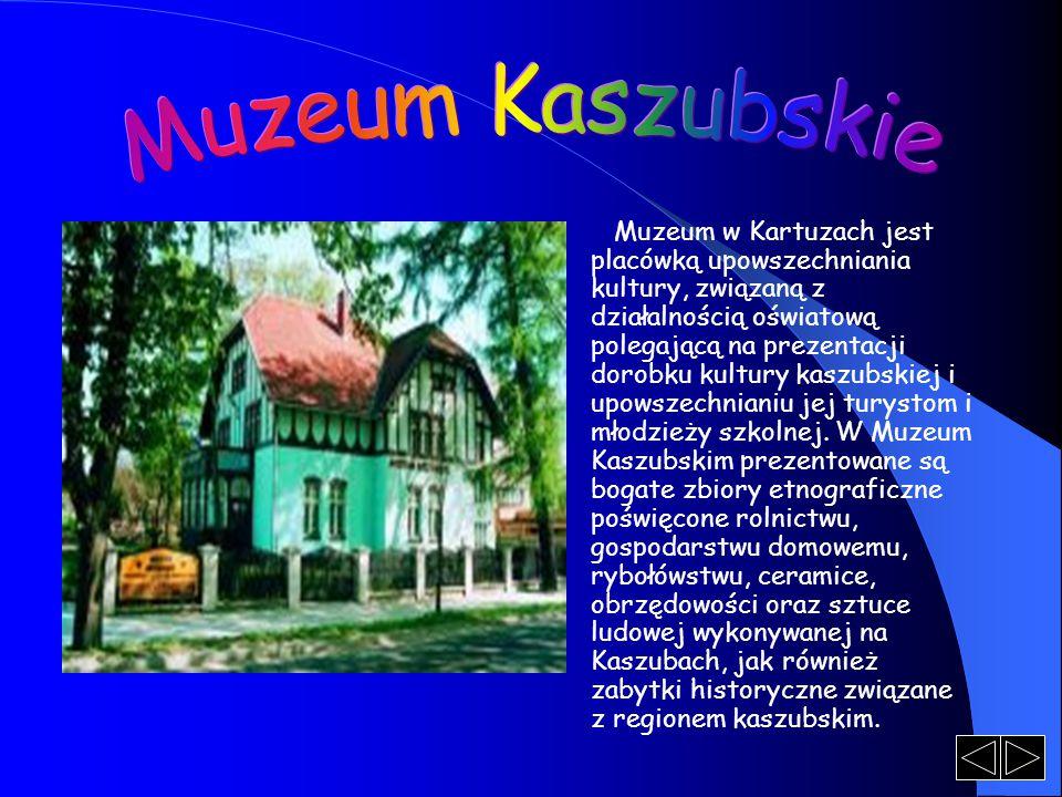Muzeum w Kartuzach jest placówką upowszechniania kultury, związaną z działalnością oświatową polegającą na prezentacji dorobku kultury kaszubskiej i upowszechnianiu jej turystom i młodzieży szkolnej.