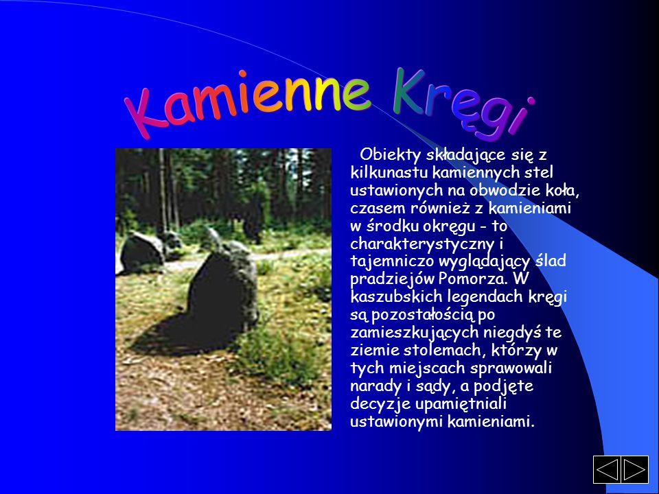 Obiekty składające się z kilkunastu kamiennych stel ustawionych na obwodzie koła, czasem również z kamieniami w środku okręgu - to charakterystyczny i
