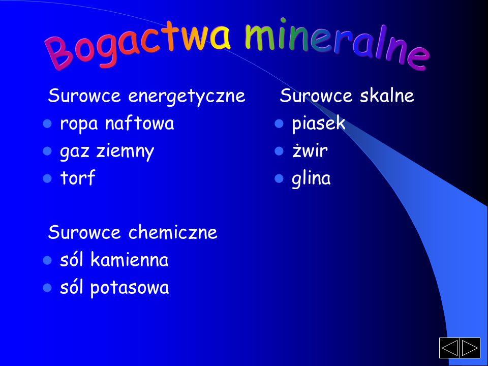 Surowce energetyczne ropa naftowa gaz ziemny torf Surowce chemiczne sól kamienna sól potasowa Surowce skalne piasek żwir glina