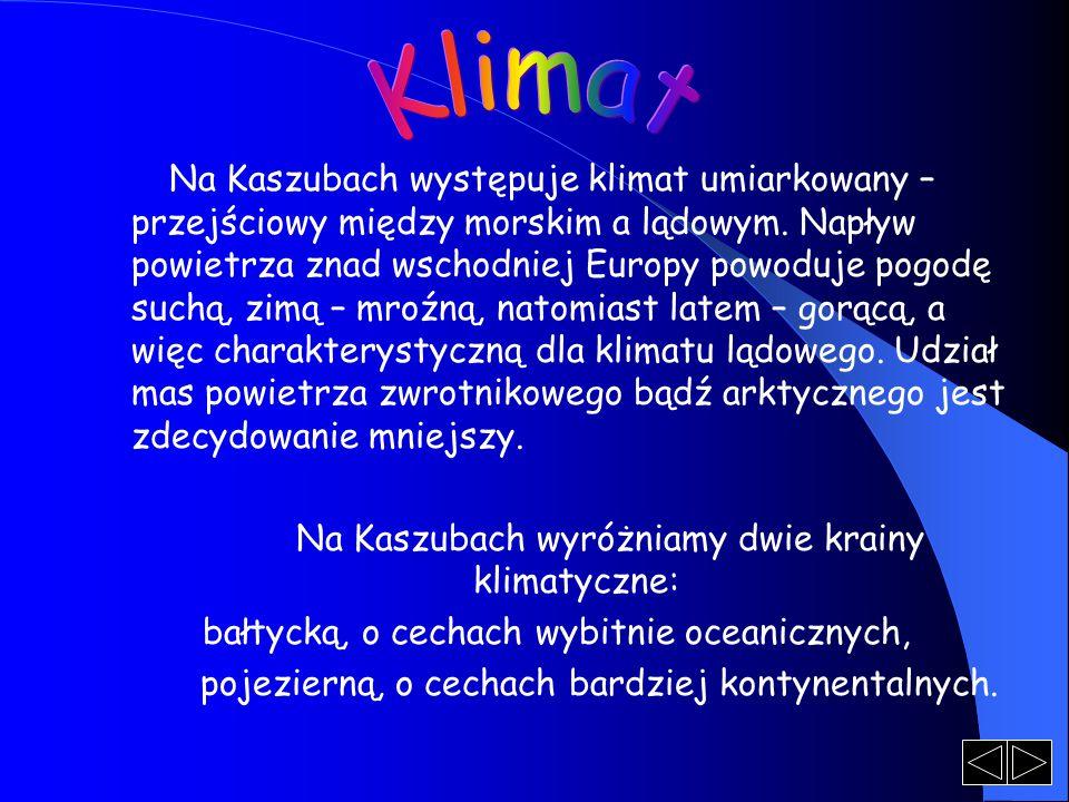 Na Kaszubach występuje klimat umiarkowany – przejściowy między morskim a lądowym. Napływ powietrza znad wschodniej Europy powoduje pogodę suchą, zimą