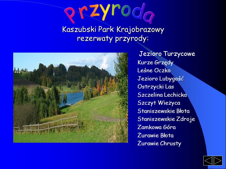 Kaszubski Park Krajobrazowy rezerwaty przyrody: Jezioro Turzycowe Kurze Grzędy Leśne Oczko ć Jezioro Lubygość Ostrzycki Las Szczelina Lechicka Szczyt