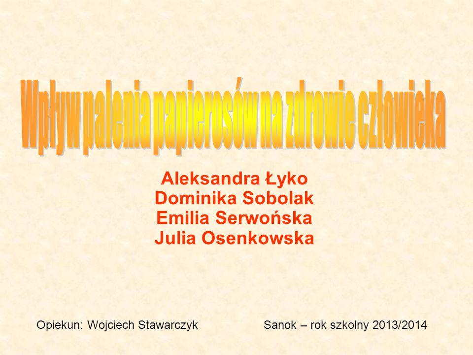 Aleksandra Łyko Dominika Sobolak Emilia Serwońska Julia Osenkowska Opiekun: Wojciech StawarczykSanok – rok szkolny 2013/2014