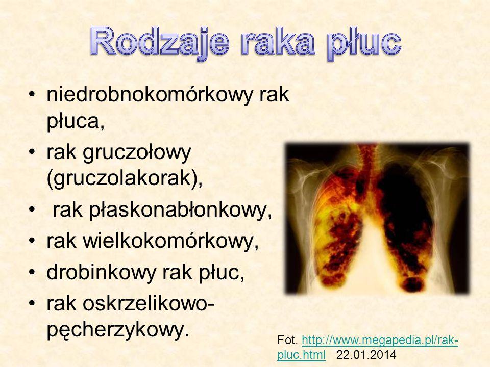 niedrobnokomórkowy rak płuca, rak gruczołowy (gruczolakorak), rak płaskonabłonkowy, rak wielkokomórkowy, drobinkowy rak płuc, rak oskrzelikowo- pęcher