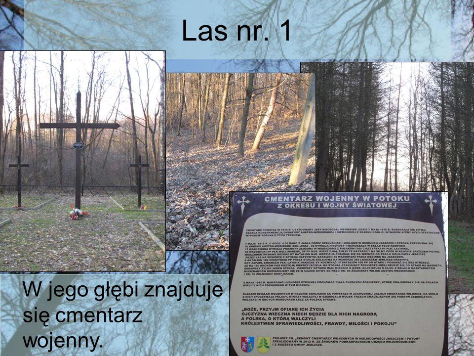 Las nr. 1 W jego głębi znajduje się cmentarz wojenny.