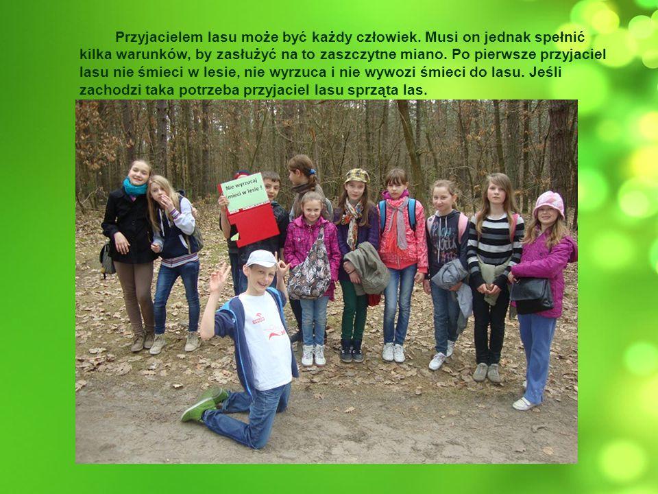 Przyjacielem lasu może być każdy człowiek. Musi on jednak spełnić kilka warunków, by zasłużyć na to zaszczytne miano. Po pierwsze przyjaciel lasu nie