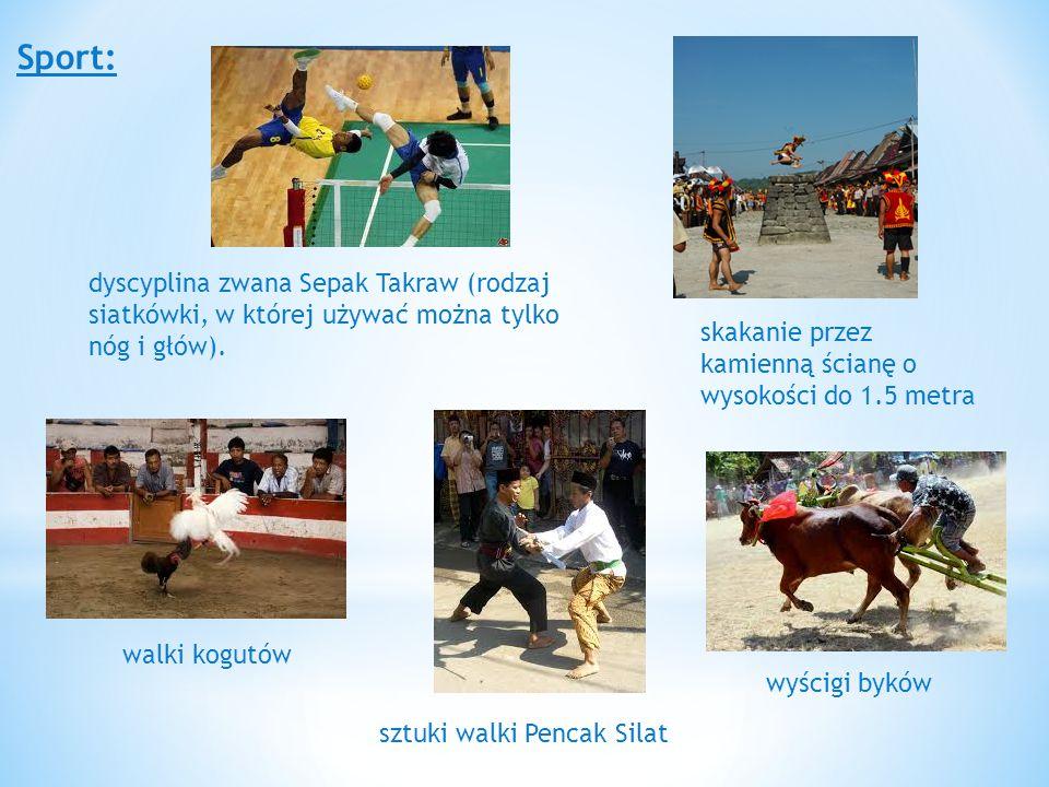 Sport: skakanie przez kamienną ścianę o wysokości do 1.5 metra wyścigi byków walki kogutów sztuki walki Pencak Silat dyscyplina zwana Sepak Takraw (rodzaj siatkówki, w której używać można tylko nóg i głów).
