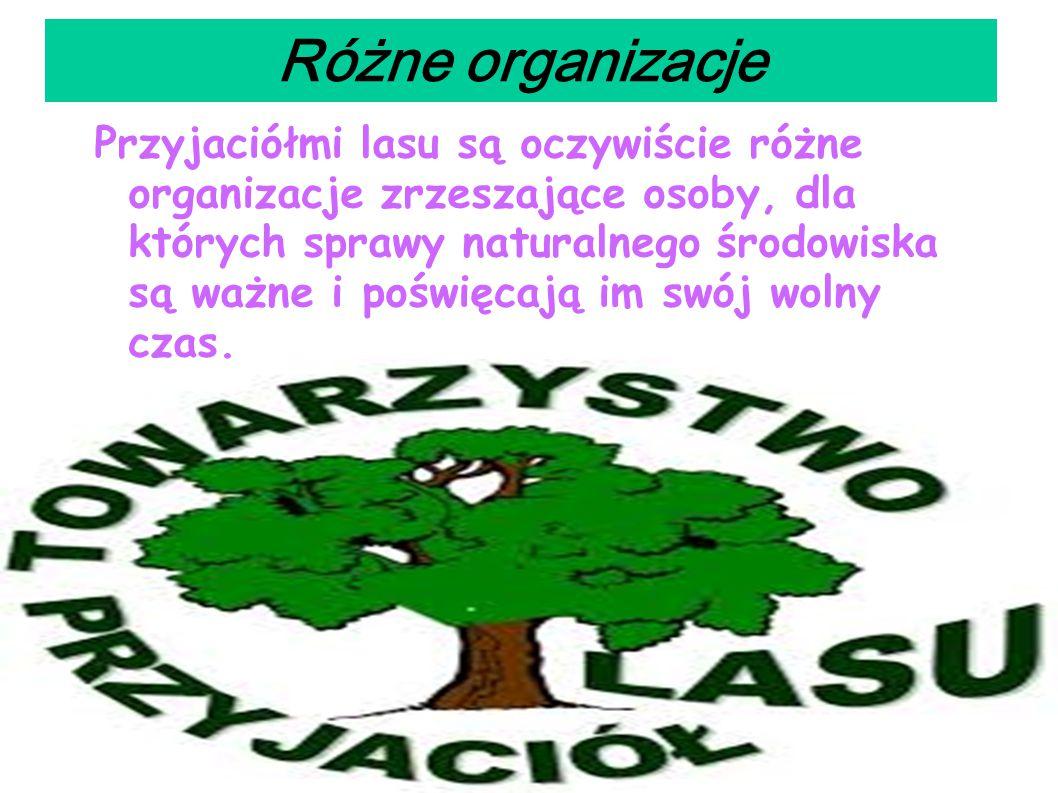 Różne organizacje Przyjaciółmi lasu są oczywiście różne organizacje zrzeszające osoby, dla których sprawy naturalnego środowiska są ważne i poświęcają