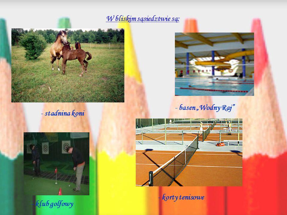 W naszej szkole mamy m.in.: - pracownię komputerową z dostępem do Internetu - pełnowymiarową salę gimnastyczną - plac zabaw z obszernym terenem zielonym i boiskami - galerie prac uczniów na każdym piętrze