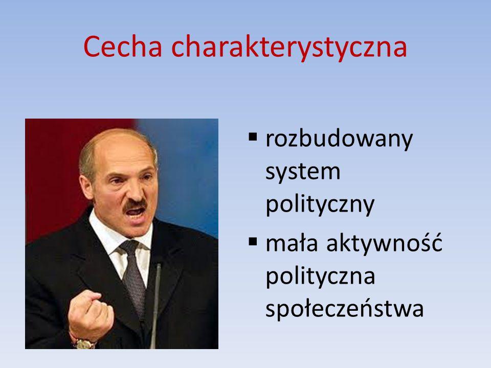 Cecha charakterystyczna  rozbudowany system polityczny  mała aktywność polityczna społeczeństwa
