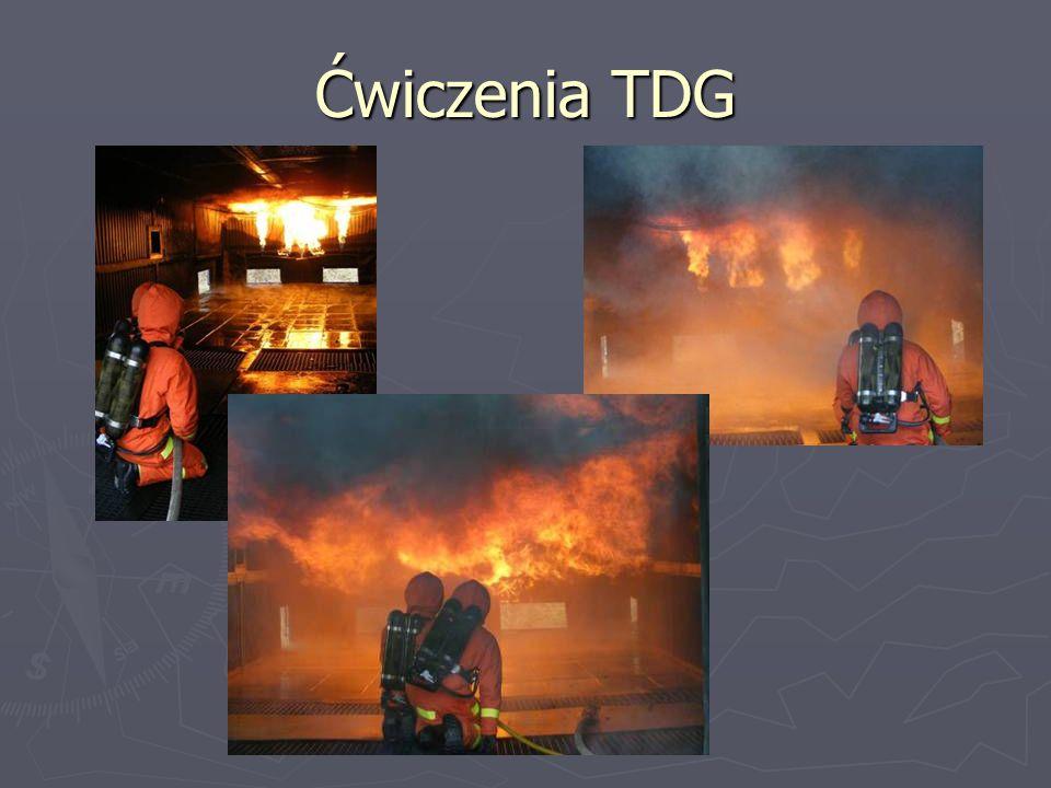 Ćwiczenia TDG