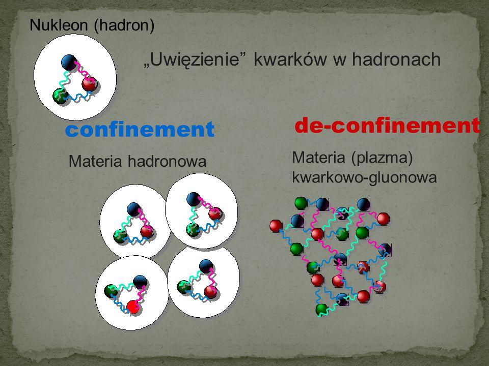 Jakie są elementarne składniki materii – jakie są ich własności.