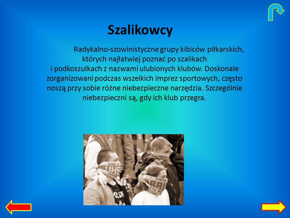 Szalikowcy Radykalno-szowinistyczne grupy kibiców piłkarskich, których najłatwiej poznać po szalikach i podkoszulkach z nazwami ulubionych klubów.