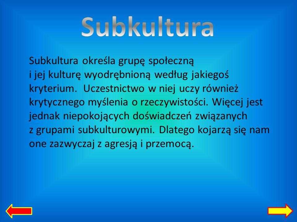 Subkultura określa grupę społeczną i jej kulturę wyodrębnioną według jakiegoś kryterium.