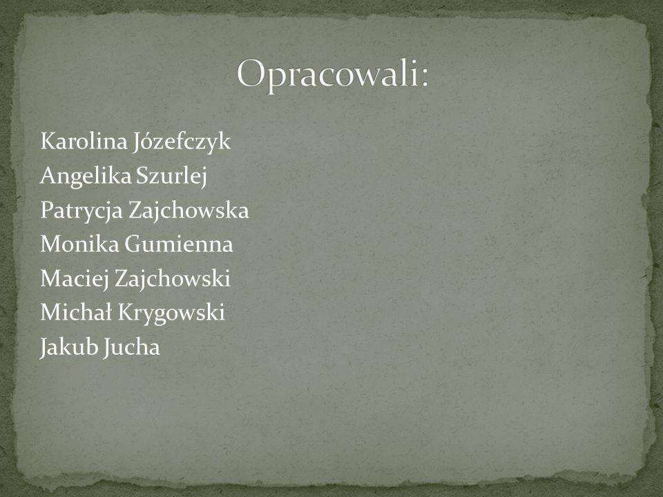 Karolina Józefczyk Angelika Szurlej Patrycja Zajchowska Monika Gumienna Maciej Zajchowski Michał Krygowski Jakub Jucha