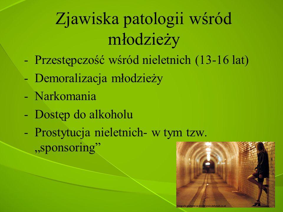 Zjawiska patologii wśród młodzieży -Przestępczość wśród nieletnich (13-16 lat) -Demoralizacja młodzieży -Narkomania -Dostęp do alkoholu -Prostytucja n