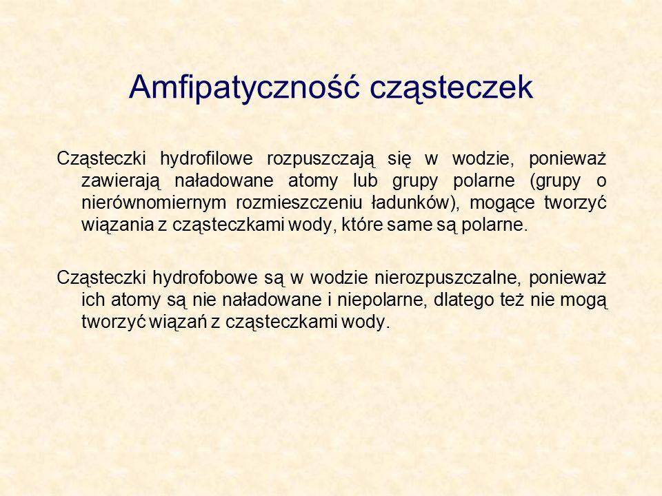 Amfipatyczność cząsteczek Cząsteczki hydrofilowe rozpuszczają się w wodzie, ponieważ zawierają naładowane atomy lub grupy polarne (grupy o nierównomie