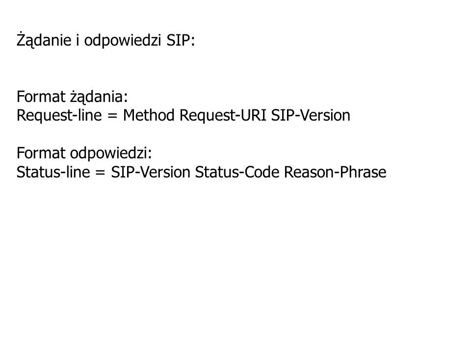 Serwery sieciowe można podzielić na: 1.Serwery pośredniczące (Proxy Server); 2.Serwery przekazujące (Redirect Server); 3.Serwery lokalizacji (Location Server); 4.Serwery rejestrowe (Registrar Server); 5.Serwery mediów (Media Server); 6.Serwery aplikacji (Aplication Server).