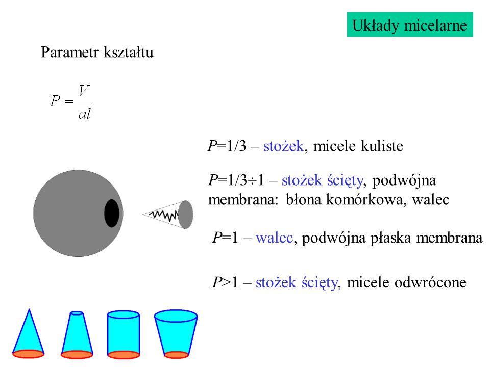 Parametr kształtu P=1/3 – stożek, micele kuliste P=1 – walec, podwójna płaska membrana P>1 – stożek ścięty, micele odwrócone P=1/3  1 – stożek ścięty, podwójna membrana: błona komórkowa, walec Układy micelarne