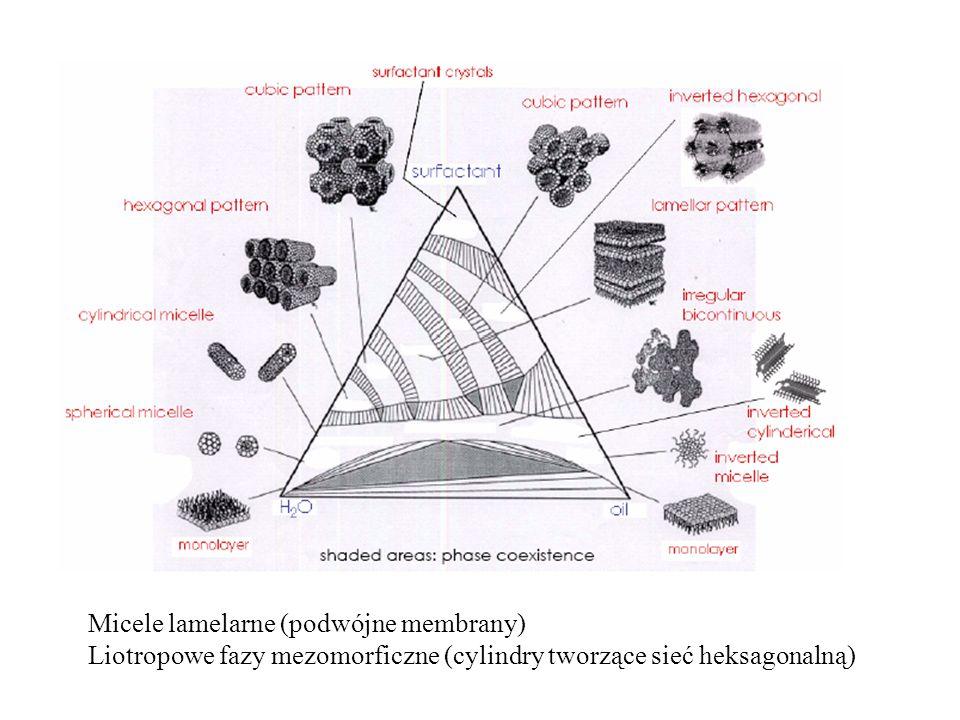 Micele lamelarne (podwójne membrany) Liotropowe fazy mezomorficzne (cylindry tworzące sieć heksagonalną)