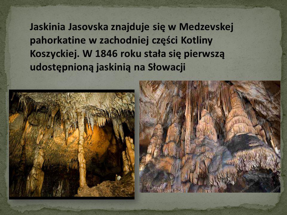 Jaskinia Jasovska znajduje się w Medzevskej pahorkatine w zachodniej części Kotliny Koszyckiej. W 1846 roku stała się pierwszą udostępnioną jaskinią n