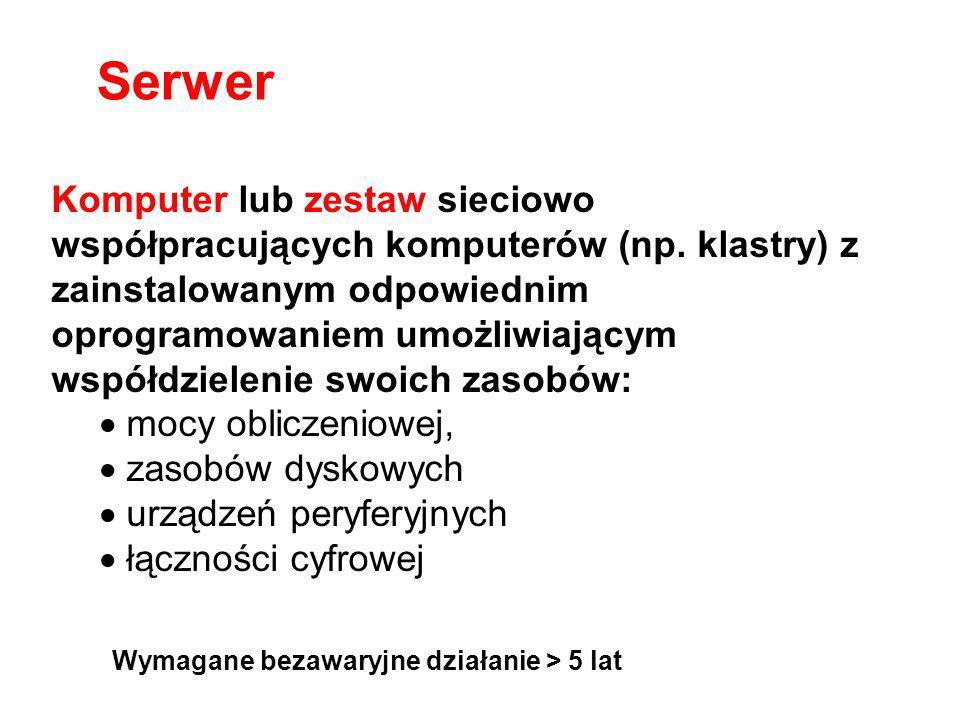 Komputer lub zestaw sieciowo współpracujących komputerów (np. klastry) z zainstalowanym odpowiednim oprogramowaniem umożliwiającym współdzielenie swoi