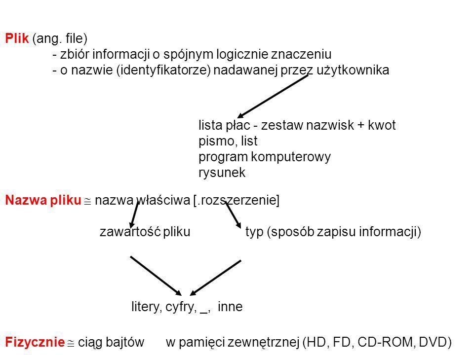 Plik (ang. file) - zbiór informacji o spójnym logicznie znaczeniu - o nazwie (identyfikatorze) nadawanej przez użytkownika lista płac - zestaw nazwisk