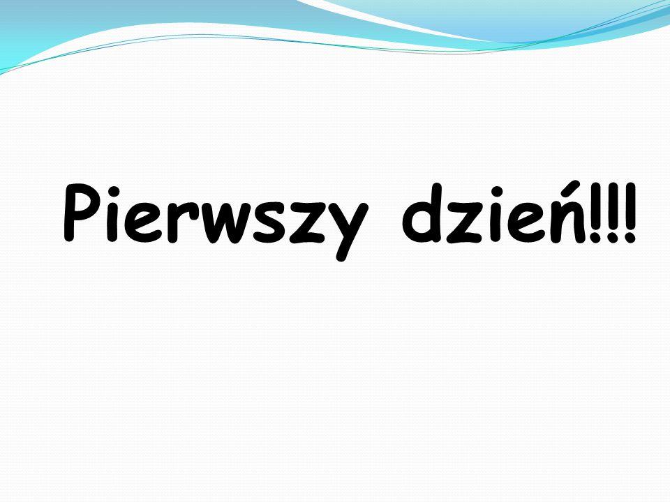 Pierwszego dnia odbył się,,Sejmik Samorządowy .