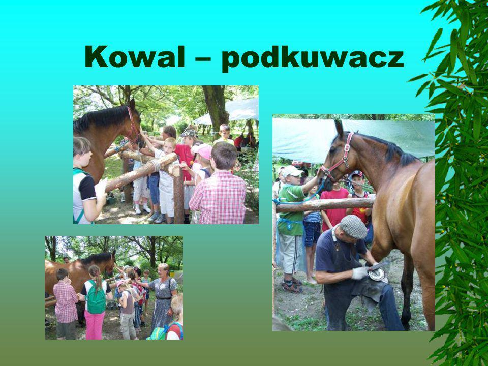 Kowal – podkuwacz