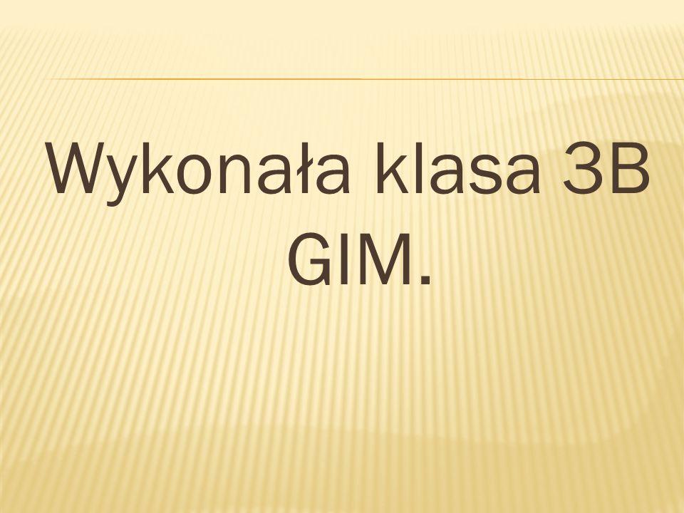 Wykonała klasa 3B GIM.