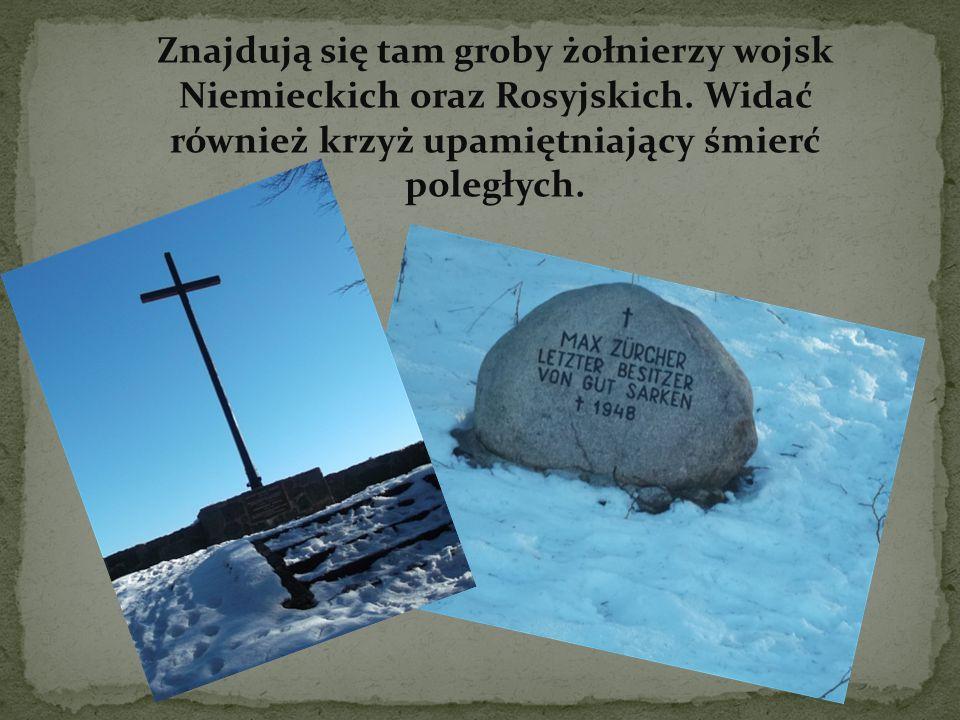 Znajdują się tam groby żołnierzy wojsk Niemieckich oraz Rosyjskich.