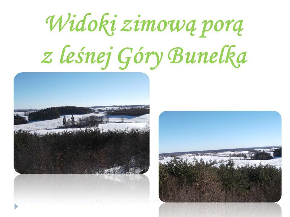 Widoki zimową porą z leśnej Góry Bunelka