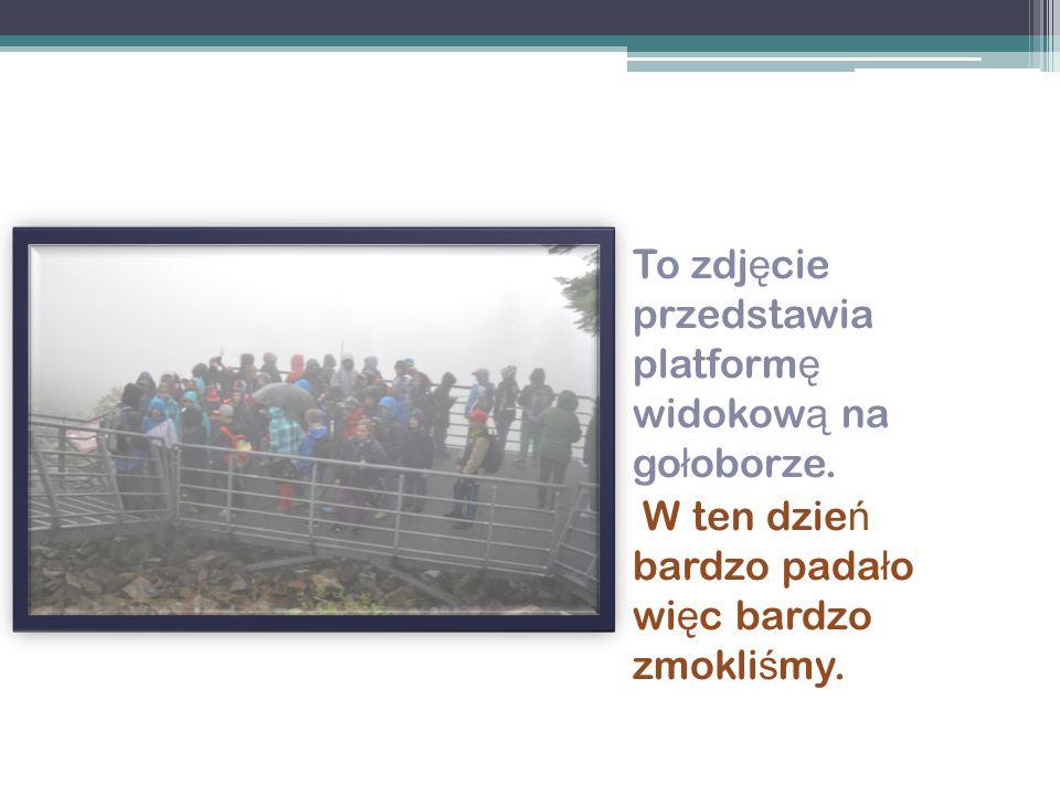 To zdj ę cie przedstawia platform ę widokow ą na go ł oborze. W ten dzie ń bardzo pada ł o wi ę c bardzo zmokli ś my.