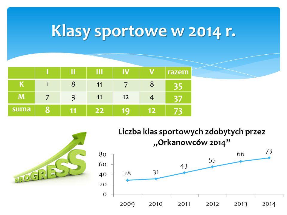 IIIIIIIVVrazem K 1 81178 35 M7311124 37 suma 81122191273 Klasy sportowe w 2014 r.