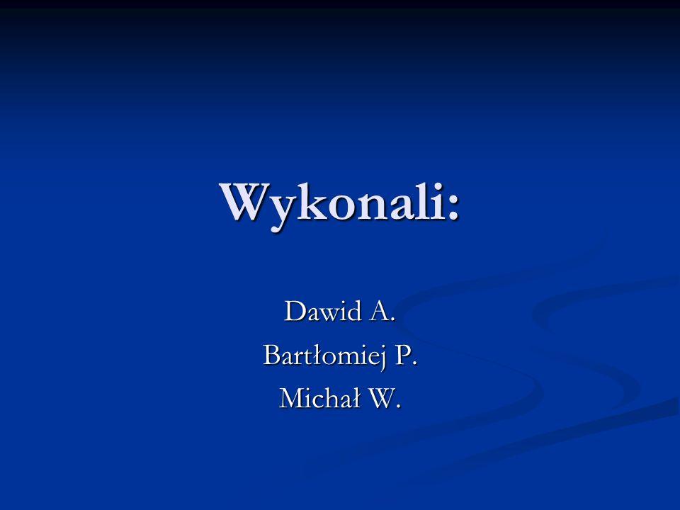 Wykonali: Dawid A. Bartłomiej P. Michał W.