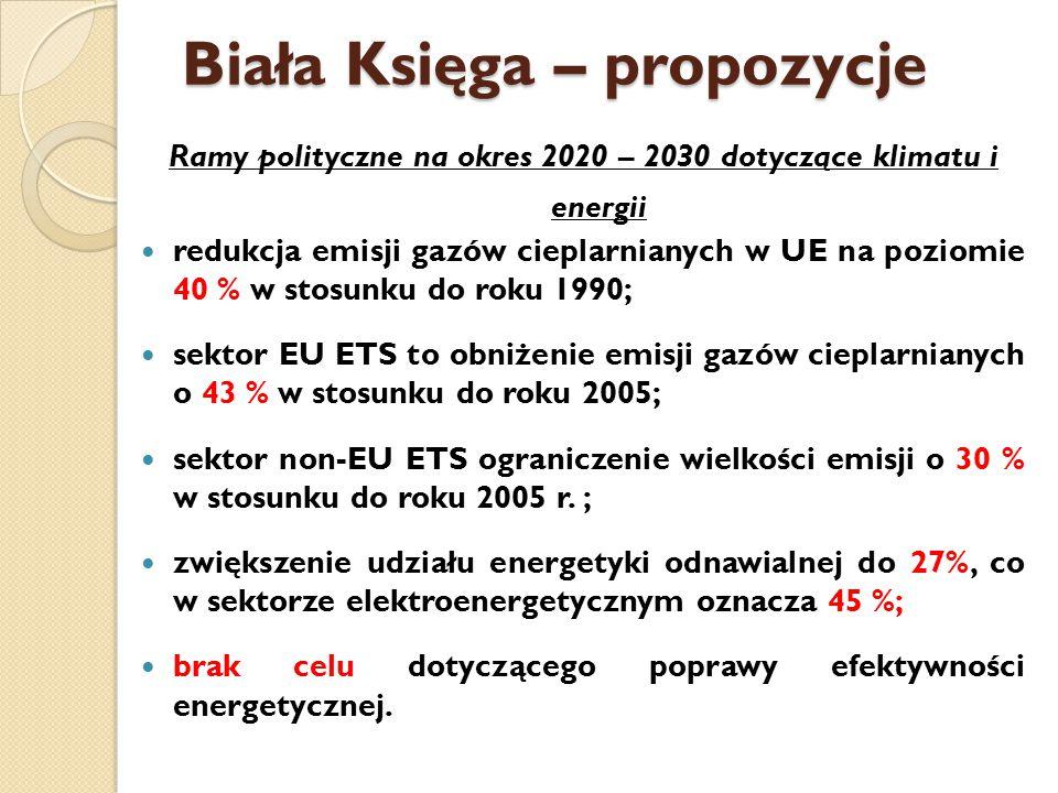 Biała Księga – propozycje Ramy polityczne na okres 2020 – 2030 dotyczące klimatu i energii redukcja emisji gazów cieplarnianych w UE na poziomie 40 % w stosunku do roku 1990; sektor EU ETS to obniżenie emisji gazów cieplarnianych o 43 % w stosunku do roku 2005; sektor non-EU ETS ograniczenie wielkości emisji o 30 % w stosunku do roku 2005 r.