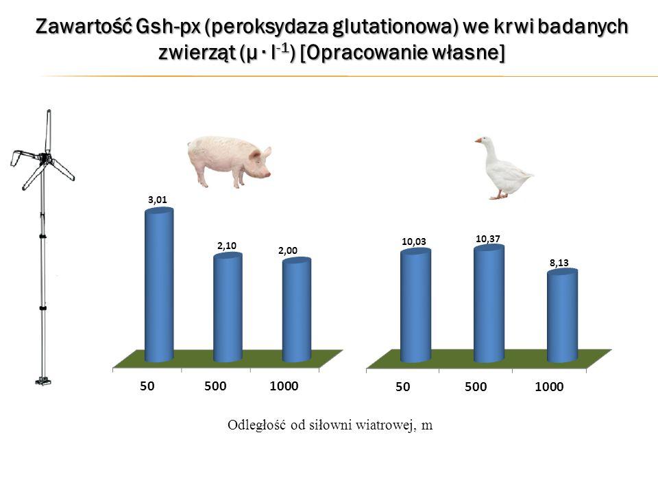 Zawartość Gsh-px (peroksydaza glutationowa) we krwi badanych zwierząt (µ ∙ l -1 ) [Opracowanie własne] Odległość od siłowni wiatrowej, m