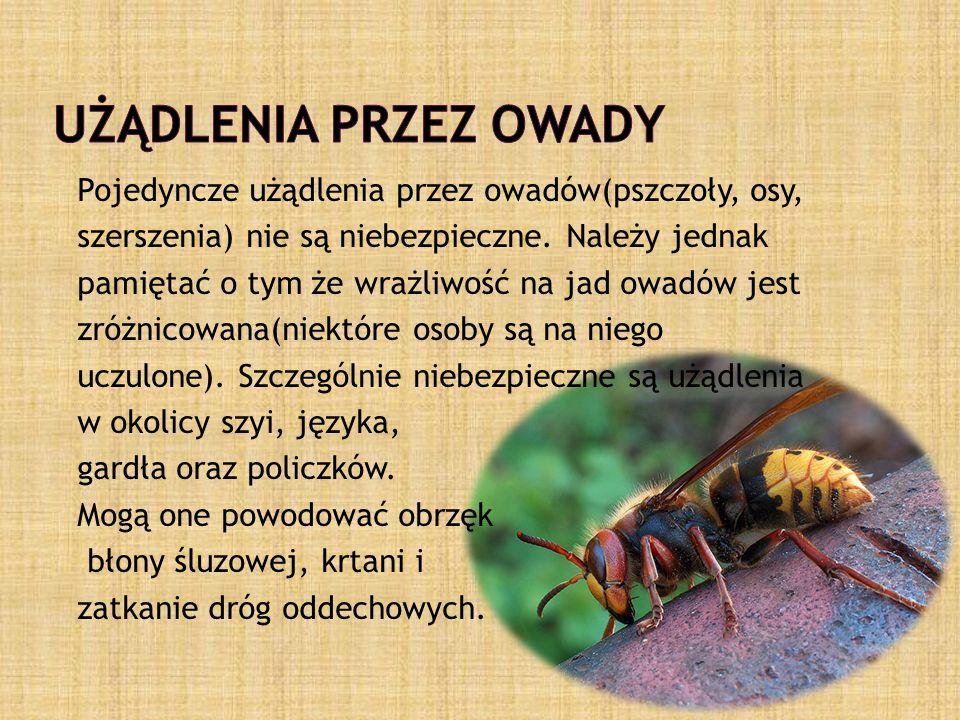 Pojedyncze użądlenia przez owadów(pszczoły, osy, szerszenia) nie są niebezpieczne.