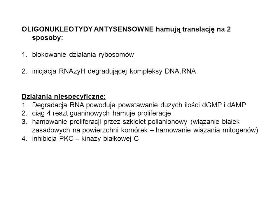 OLIGONUKLEOTYDY ANTYSENSOWNE hamują translację na 2 sposoby: 1.blokowanie działania rybosomów 2.inicjacja RNAzyH degradującej kompleksy DNA:RNA Działania niespecyficzne: 1.Degradacja RNA powoduje powstawanie dużych ilości dGMP i dAMP 2.ciąg 4 reszt guaninowych hamuje proliferację 3.hamowanie proliferacji przez szkielet polianionowy (wiązanie białek zasadowych na powierzchni komórek – hamowanie wiązania mitogenów) 4.inhibicja PKC – kinazy białkowej C