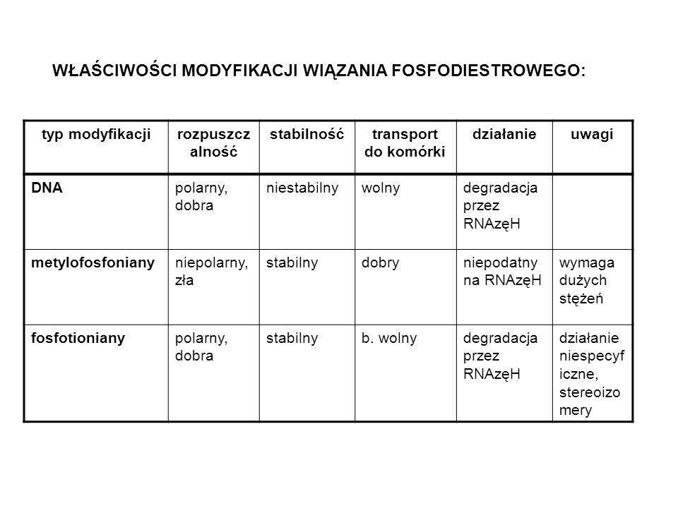 WŁAŚCIWOŚCI MODYFIKACJI WIĄZANIA FOSFODIESTROWEGO: typ modyfikacjirozpuszcz alność stabilnośćtransport do komórki działanieuwagi DNApolarny, dobra niestabilnywolnydegradacja przez RNAzęH metylofosfonianyniepolarny, zła stabilnydobryniepodatny na RNAzęH wymaga dużych stężeń fosfotionianypolarny, dobra stabilnyb.