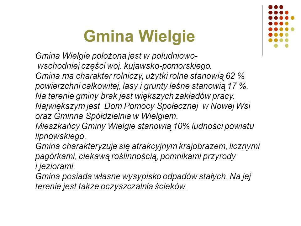 Gmina Wielgie Gmina Wielgie położona jest w południowo- wschodniej części woj. kujawsko-pomorskiego. Gmina ma charakter rolniczy, użytki rolne stanowi