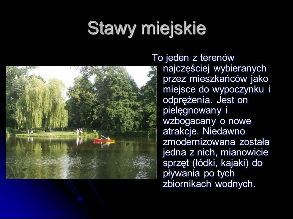 Zabytki miejskie Tak wielka ilość zabytków na stosunkowo niewielki teren, jaki zajmuje Oleśnica w porównaniu do większych metropolii, musi być dużą zaletą turystyczną.