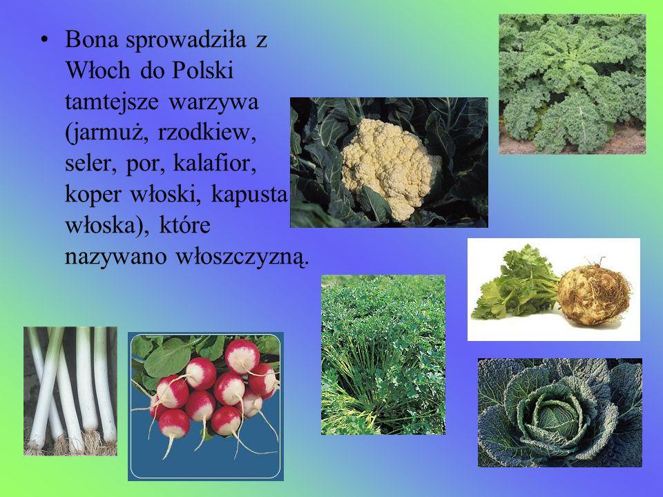 Bona sprowadziła z Włoch do Polski tamtejsze warzywa (jarmuż, rzodkiew, seler, por, kalafior, koper włoski, kapusta włoska), które nazywano włoszczyzn