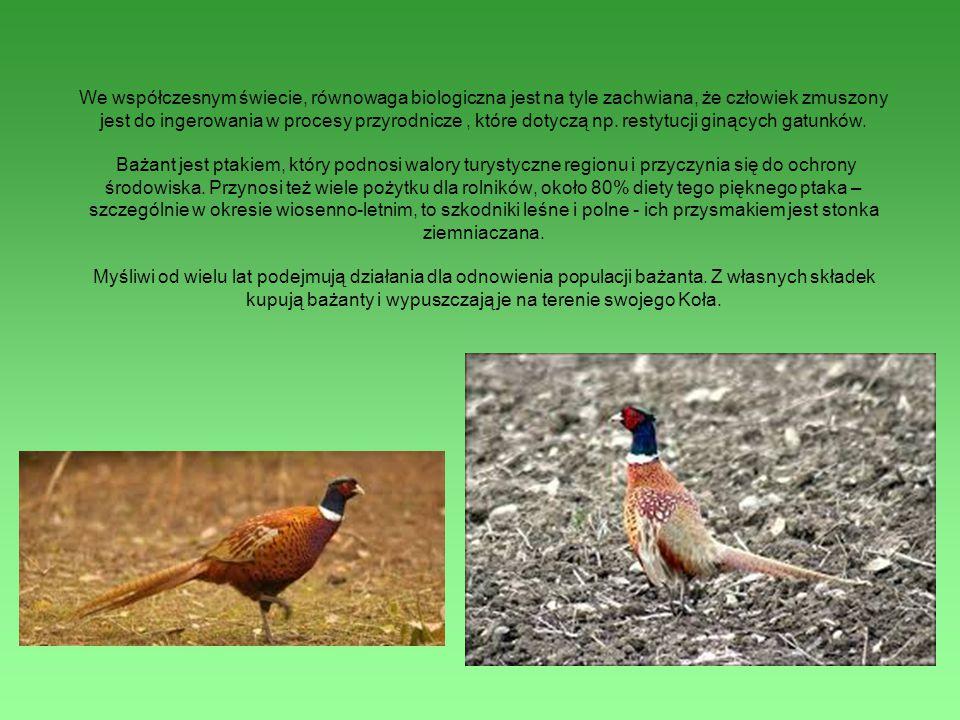 We współczesnym świecie, równowaga biologiczna jest na tyle zachwiana, że człowiek zmuszony jest do ingerowania w procesy przyrodnicze, które dotyczą