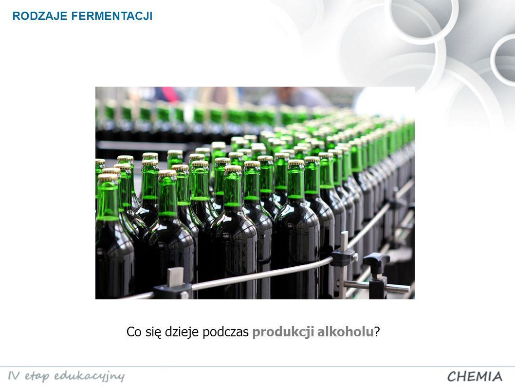Co się dzieje podczas produkcji alkoholu? RODZAJE FERMENTACJI