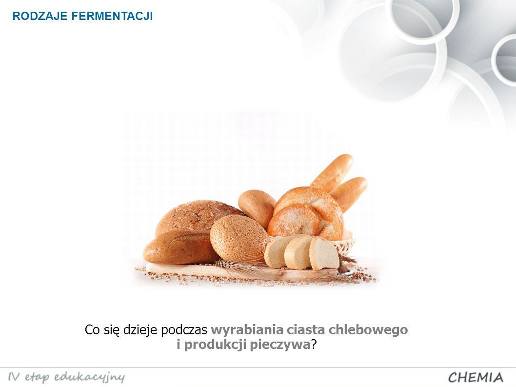 Co się dzieje podczas wyrabiania ciasta chlebowego i produkcji pieczywa? RODZAJE FERMENTACJI