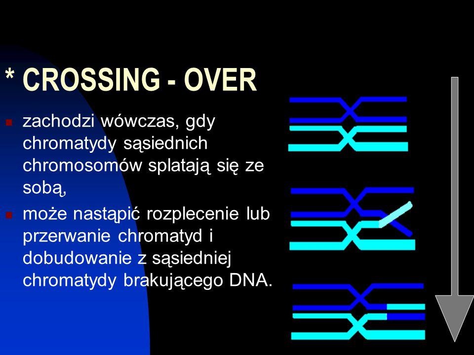 * CROSSING - OVER zachodzi wówczas, gdy chromatydy sąsiednich chromosomów splatają się ze sobą, może nastąpić rozplecenie lub przerwanie chromatyd i d