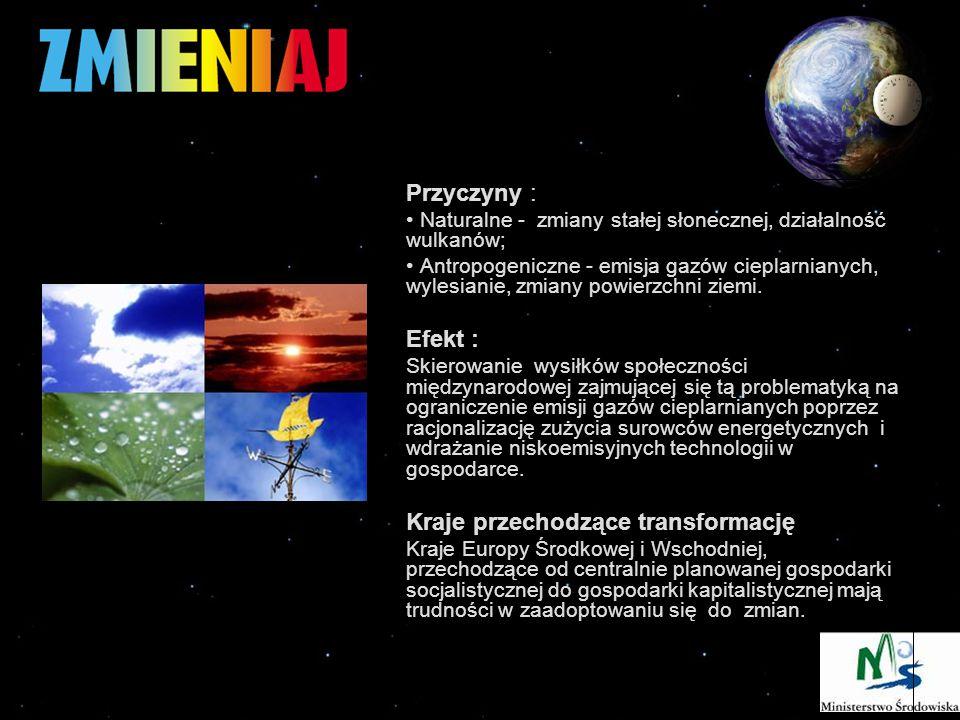 Przyczyny : Naturalne - zmiany stałej słonecznej, działalność wulkanów; Antropogeniczne - emisja gazów cieplarnianych, wylesianie, zmiany powierzchni ziemi.