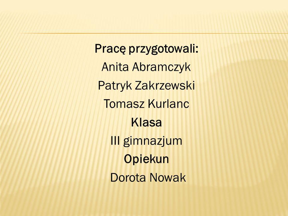 Pracę przygotowali: Anita Abramczyk Patryk Zakrzewski Tomasz Kurlanc Klasa III gimnazjum Opiekun Dorota Nowak
