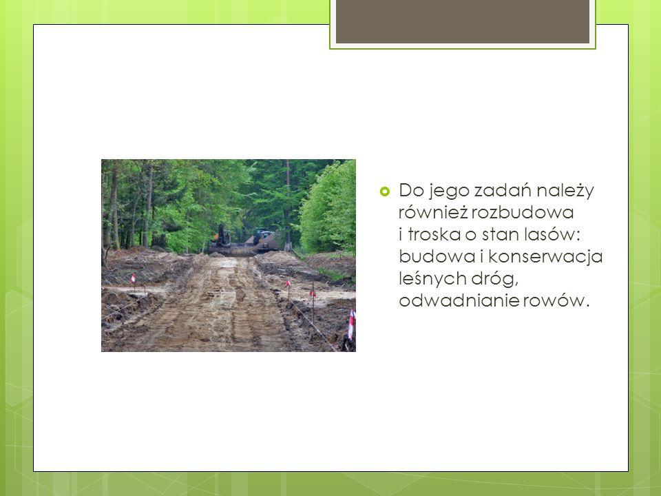  Do jego zadań należy również rozbudowa i troska o stan lasów: budowa i konserwacja leśnych dróg, odwadnianie rowów.