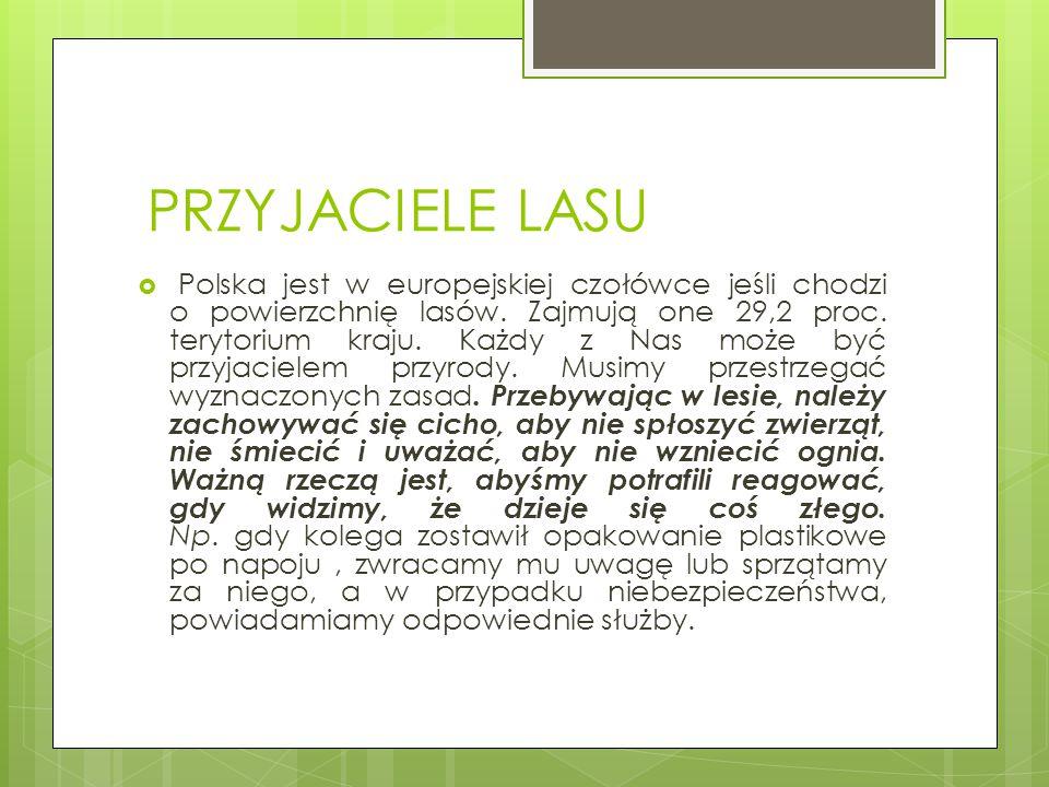 PRZYJACIELE LASU  Polska jest w europejskiej czołówce jeśli chodzi o powierzchnię lasów. Zajmują one 29,2 proc. terytorium kraju. Każdy z Nas może by